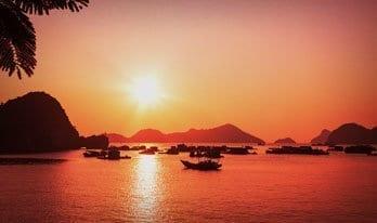 Real Vietnam Experience   Plan My Gap Year