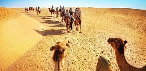 PMGY Volunteer Weekend trips in Morocco on a camel ride in the Sahara desert during their Volunteer work in Morocco