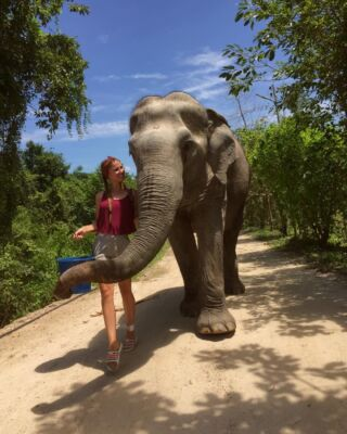 Elephants make the world a better place 🐘⁠ ⁠ #pmgy #pmgythailand