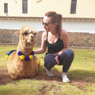 Day 3: I made a friend...or two😍🇵🇪 • • • • • #peru #adventures #llama #alpaca #sun #cusco #travelling #mountains #southamerica #peruviansun #grass #fluffy #workthoseangles #exploring #pmgyperu #planmygapyear #pmgy