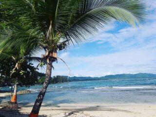 Loving this Caribbean Sea 😍😍 academiatica #pmgycostarica #caribbean #ocean #beauty #beach #volunteering #travelgoals